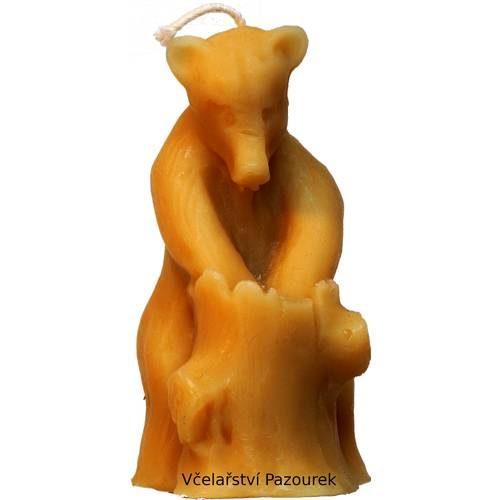 Svíčka medvěd