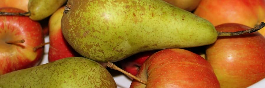 Oblíbené odrůdy jabloní, hrušní a třešní
