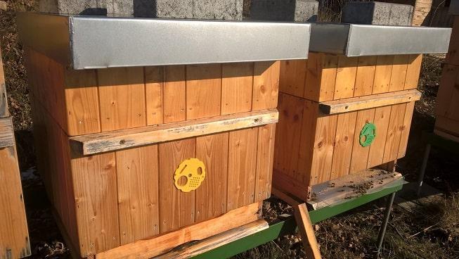 Co dělá včelař v lednu – test varroázy