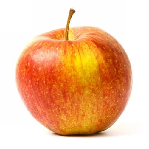 Jabloň Zlatá reneta